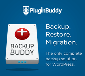 Backup WordPress Easily
