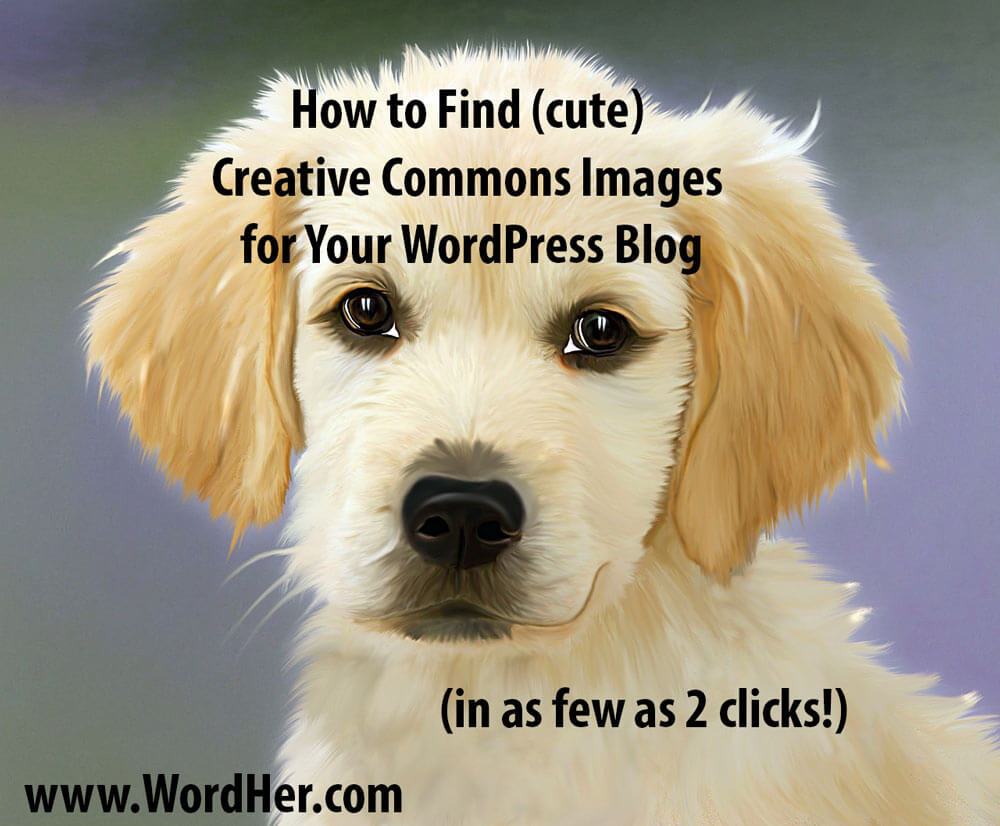 How to find Creative Commons images for your WordPress blog.  Easy video tutorial from WordHer.com