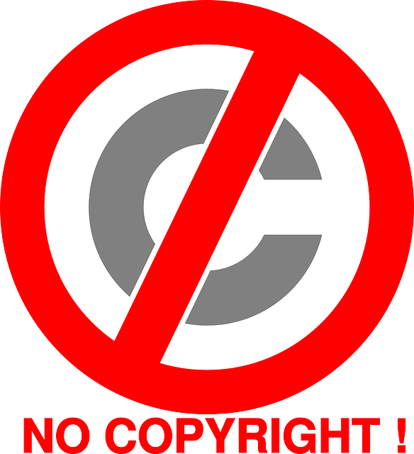 Public Domain means no copyright.