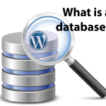 What Is A Datbase