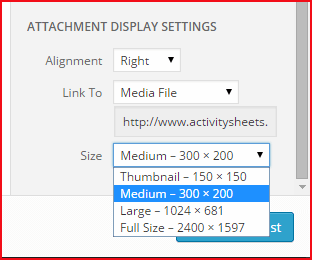 Media Library Attachment Sizes