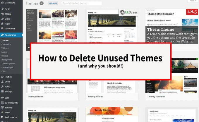 How to delete unused themes